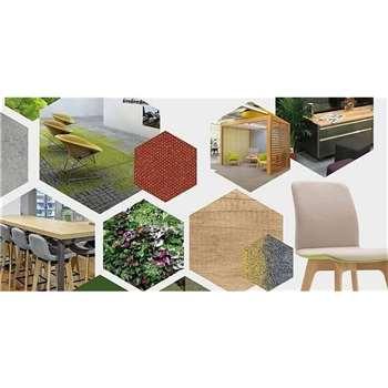 Biophilic Interior Design - Greener & Healthier Home